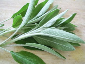 nutritional benefits of sage